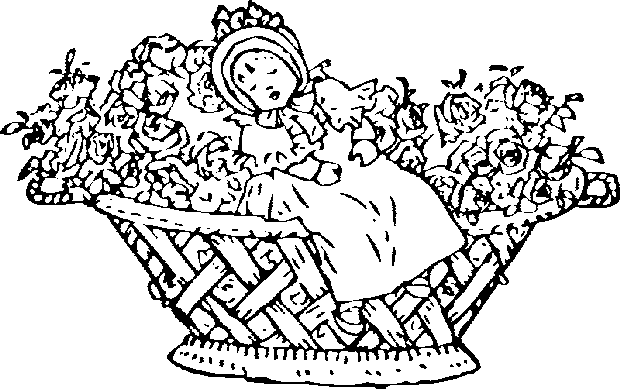 Flower Coloring Pages | 389x620